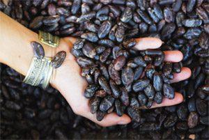 Kakao macht glücklich!