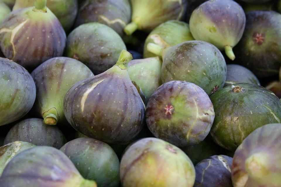 figs-1122197_960_720