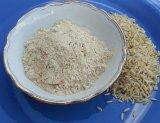 Reisproteinpulver 80%, natur, roh, bio kaufen
