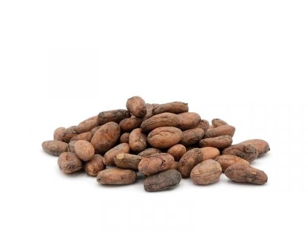 Kakaobohnen, natur, bio kbA, ungeröstet