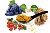 Gelenkaktiv Basis bio - Basisversorgung für gesunde Gelenke vegan