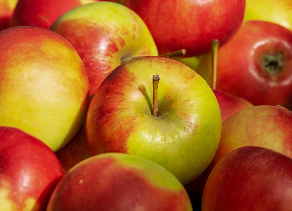 Elstar-Apfel-f-ur-unsere-Apfelchips-getrocknet