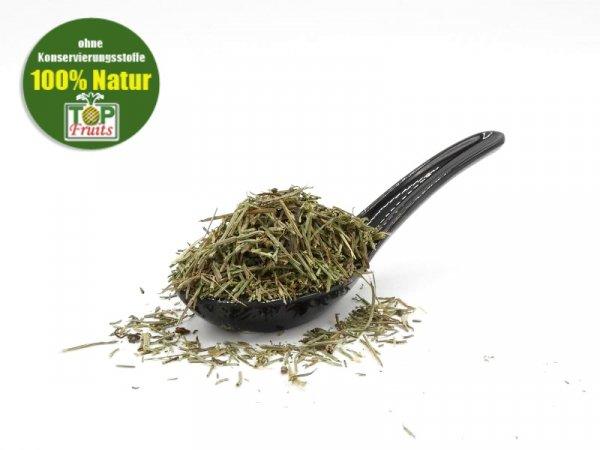Schachtelhalmkraut (auch Zinnkraut oder Katzenschwanz, Equisetum arvense L.), natur, geschnitten