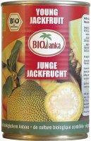 Junge Jackfrucht, Stücke in Salzlake, bio kbA, 400g Dose