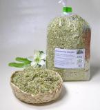Vitaltees & Kräuter Griechischer Bergtee, natur (Sideritis kaufen