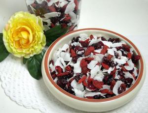 Gojimix-Vitalstoffsnack mit Gojibeeren, Cranberries und Kokoschips
