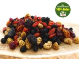 Beeren-Mix, natur, Vitalbeerenmischung kaufen