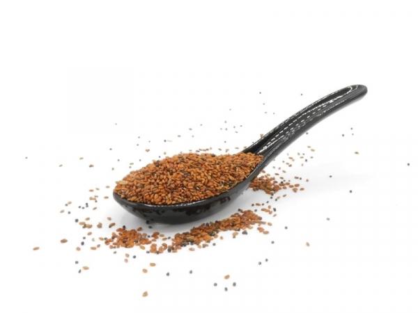 Kressesamen, bio kbA, natur, für leckere Keimsprossen