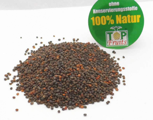 Rucolasamen (Eruca sativa, Garten-Rauke), bio kbA, für würzige Keimsprossen