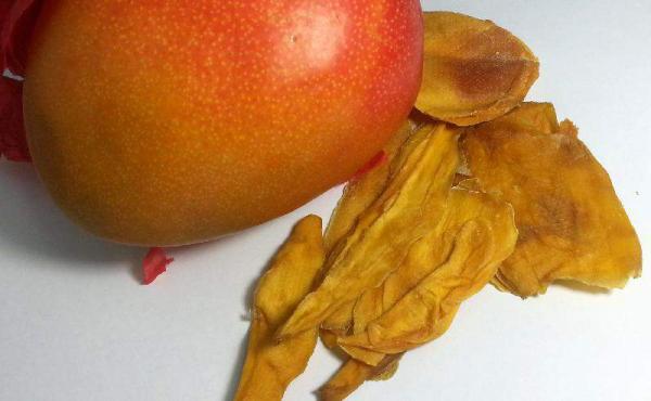 Mangoscheiben, bio kbA und Rohkost-Qualität, ungezuckert, weich, faserfrei, Sorte Kent