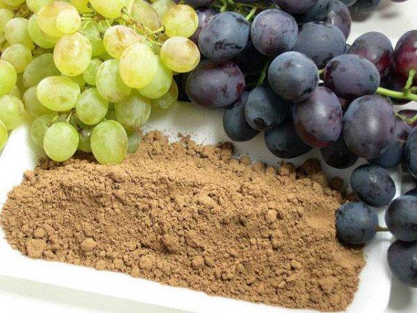 Traubenkernmehl - extra fein - aus Bio Trauben kbA, Vitalstoffe aus dem Herz der Traube