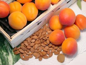 Aprikosenkerne, süß, natur, handverlesen, aus der Türkei