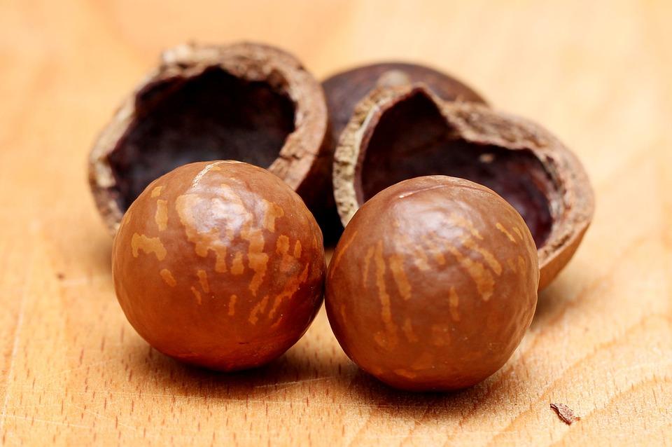 Macadamia Nüsse natur