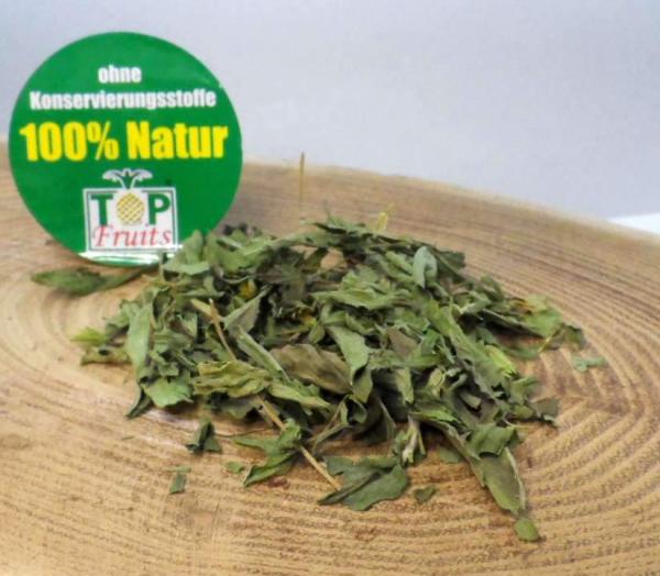 Stevia Blätter, natur, getrocknet, geschnitten (Süßkraut, Stevia Rebaudiana)