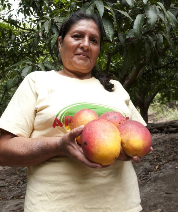 Mango_Peru1