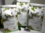 Weidenröschen (Epilobium parviflorum)  - kaufen
