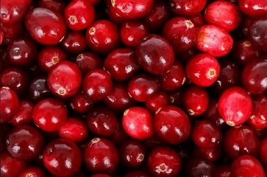 Frische-Bio-Cranberries