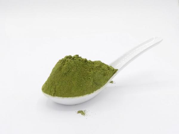 Moringa Pulver (Moringa oleifera), Blattpulver, bio kbA, natur - Rohkostqualität